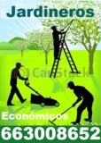 Jardineros desbroces 663008652 - foto