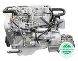 Motor carretillas diesel  km0 - foto