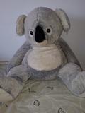 Peluche Koala - foto