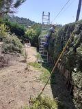 Limpieza jardines tala desbroce forestal - foto