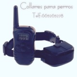jhx2 / Collares adiestramiento perros - foto
