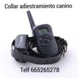f5lo  Collares adiestramiento perros - foto