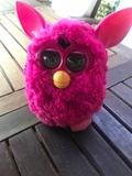 Furby - foto