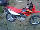 HONDA - XR 125 L - foto