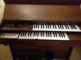 organo electrico - foto
