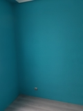 Pinto brasileño. - foto