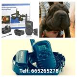 fqhc / Collares adiestramiento perros - foto