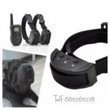t2g . Collares adiestramiento perros - foto