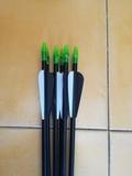 6 flechas - foto