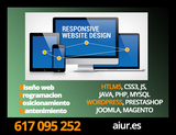 DESARROLLO Y DISEÑO WEB - foto