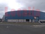 NAVE INDUSTRIAL CON AREA EXPOSICIÓN - foto