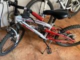 bicicleta 50 - foto