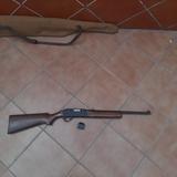 Rifles calibre 22 - foto