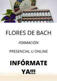 FORMACIÓN EN FLORES DE BACH - foto