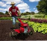 jardinero 627582200 Raúl - foto