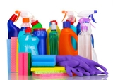 Desinsectación y limpieza - foto