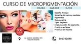 Curso de micropigmentacion cejas ,labios - foto