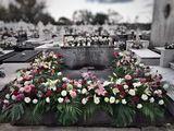 Mantenimiento floral de sepulturas - foto