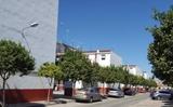 PARTICULAR LOS QUINTILLOS - CODORNIZ - foto