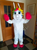 Disfraz unicornio arcoiris pony  200 eur - foto