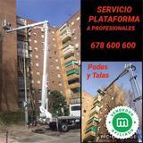 SERVICIO Alquiler camion cesta plataform - foto