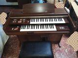 Organo doble teclado marca kawai - foto