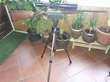 Rifle sauer - foto