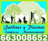 Jardineros - mantenimiento - 663008652 - foto