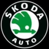 Diagnósis Oficial Skoda - foto