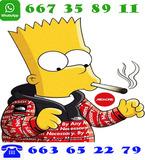 2722 vbecx 24H NAMAS PAEL TABAC - foto