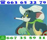 3324 qhkkq comtrareembolso -/entub@r - foto
