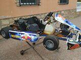 ROTAX MAX - ROTAX MAX 125 - foto