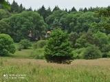 Buscar casa independiente, natura - foto