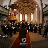 Música de funeral en navarra - foto
