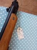 escopeta de plomillos - foto