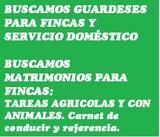 BUSCAMOS MATRIMONIOS GUARDESES FINCA - foto