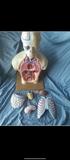 cuerpo humano en 3d - foto