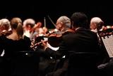 Violinista para su evento - foto