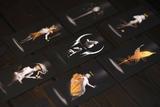 Tarot Chat Tarot Mensajes Tarot Llamadas - foto