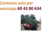 GRUA FUERTE 380 - foto