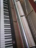 Afinador y restaurador de pianos. - foto