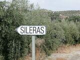 Blogger-Influencer para proyecto SILERAS - foto