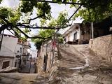 ALPUJARRA - CORTIJO EN YEGEN - 4069 - foto