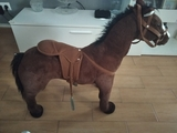 caballo - foto
