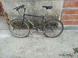 vendo bicletas - foto