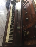 piano strauss - foto