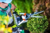 jardineria mantenimiento avila - foto
