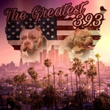THE GREATEST AMERICAN BULLY - foto