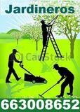 Jardineros Mantenimiento Economico - foto