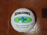 BALÓN DE VOLEYBALL SPALDING - foto